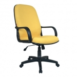 Chairman – Director Chair 801B